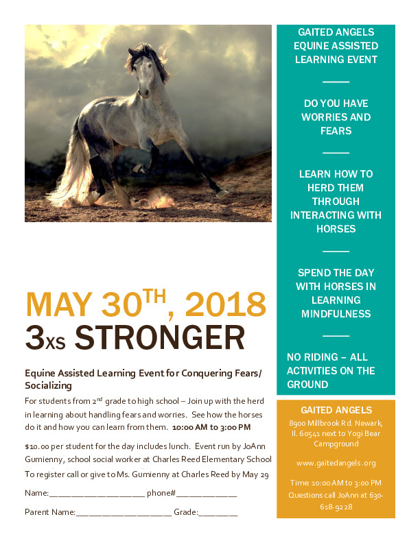 Gaited Angels Equine Assisted Learning Event - 3xs Stronger