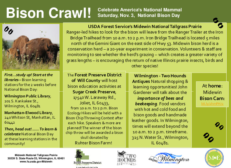 National Bison Day at Midewin