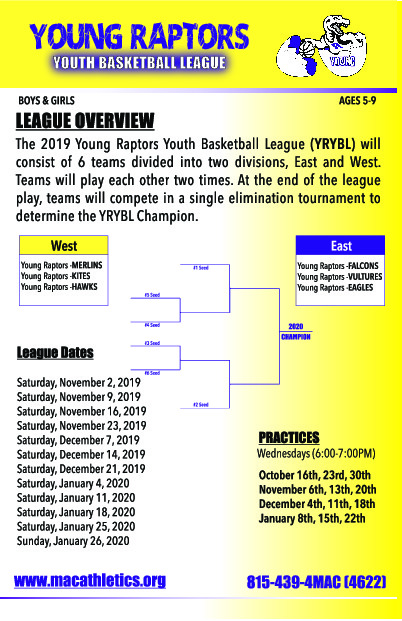 Young Raptors Basketball League