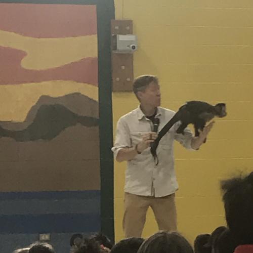 Rainforest Animals Assembly
