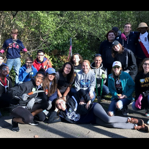 APES study at Hammel Woods, 10.21.2017