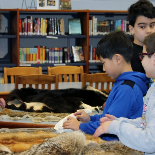 Second graders learn how animals survive in winter, 02.08.2018