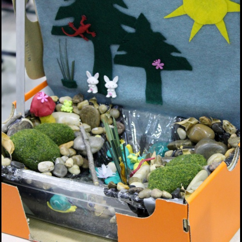 First graders talk about pond ecosystems with dioramas, 03.05.2018