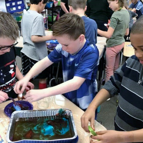 Third graders clean up miniature oil spill, 04.06.2018