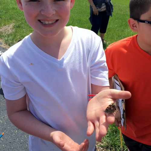 Kindergarten, 1st, 2nd graders release butterflies after study, 05.17.2018