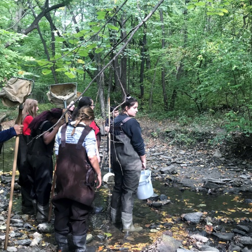 Science students explore waters at Hammel Woods, 10.02.2018