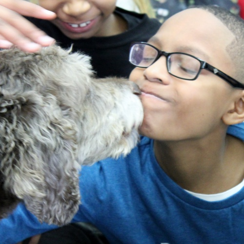 Therapy dog Coco visit for Read-A-Thon, 01.25.2019