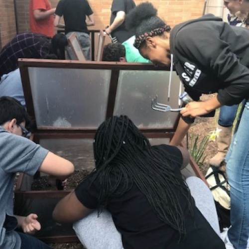 8th graders plant seeds in grant funded cold frames, 04.09.2019