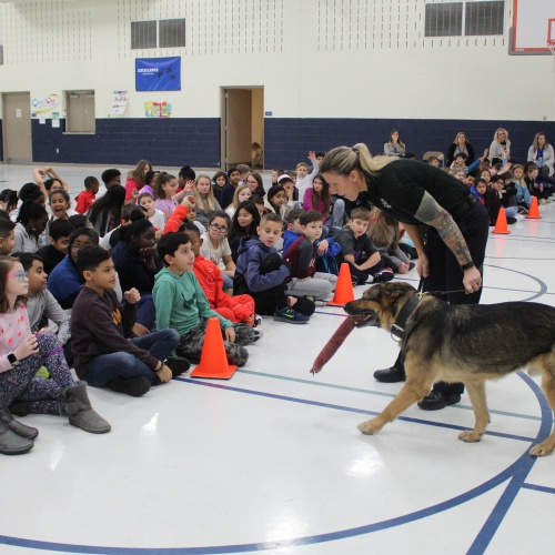 Plainfield Police K-9 gives demonstration to fifth grade D.A.R.E. students, 01.09.2020