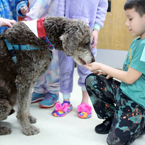 Therapy dog Coco visits students during Read-A-Thon, 01.24.2020