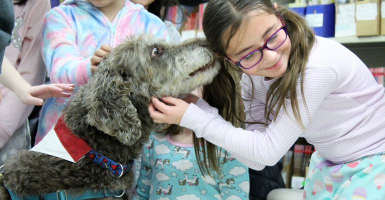 Coco the therapy dog visits Crystal Lawns Elementary School