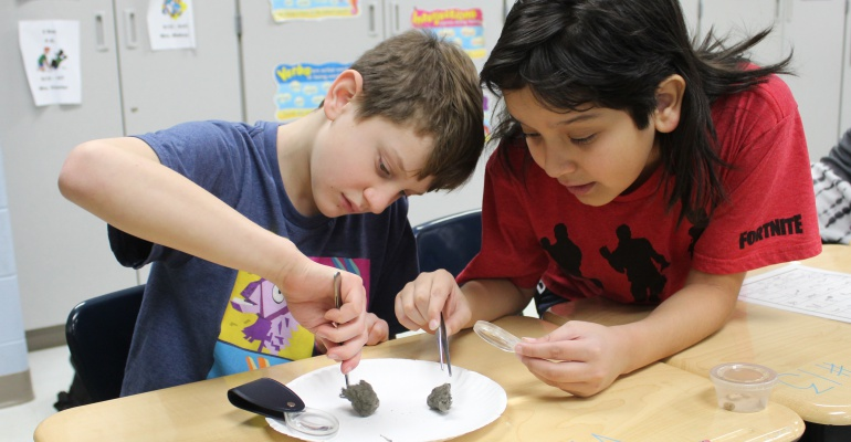 Eichelberger Elementary School fifth graders dissect owl pellets
