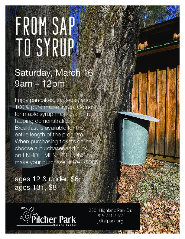 From Sap to Syrup at Pilcher Park Nature Center in Joliet